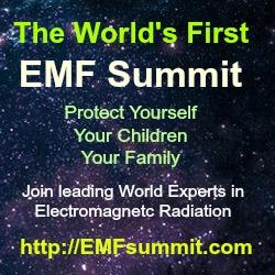 EMFsummit image